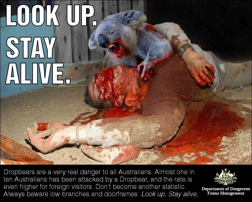 Australian Icons:The Ferocious Australian Drop Bear (3/6)