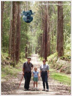 Australian Icons:The Ferocious Australian Drop Bear (5/6)