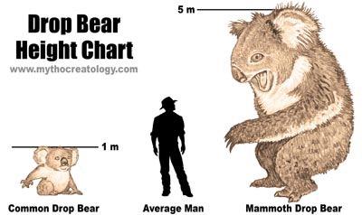 Australian Icons:The Ferocious Australian Drop Bear (6/6)